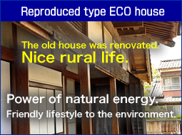 Recycled eco house